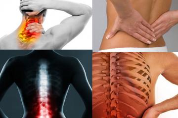 quel-lien-existe-entre-la-colonne-vertebrale-et-les-organes-voici-la-reponse-0