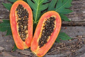 ces-graines-sont-benefiques-pour-la-sante-de-lintestin-du-foie-et-des-reins