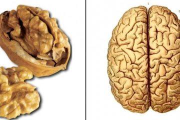 crise-du-nerf-sciatique-ce-simple-exercice-vous-aidera-a-vous-debarrasser-de-la-douleur-1-1