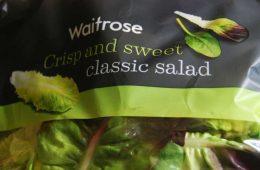 salad_poison