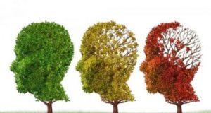 Alzheimer Tout savoir