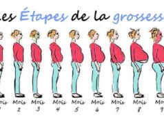 Evolution grossesse