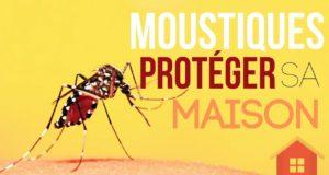Lutter contre les moustiques naturellement